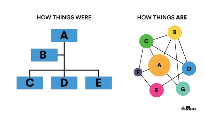 Organizational structure illustration