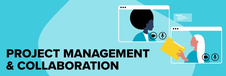 Project management and collaboration infographic